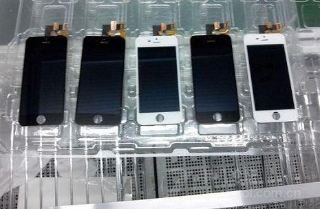 Первые живые фото iPhone 5S попали в Сеть