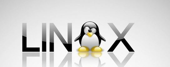 В будущем году выйдет революционная ОС Linux++