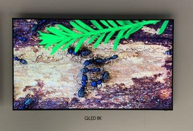 В продаже появились Samsung OLED телевизоры
